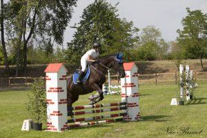 Corsi intermedi ed avanzati di Equitazione