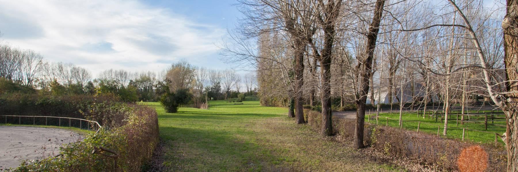 Parco Scuola Padovana