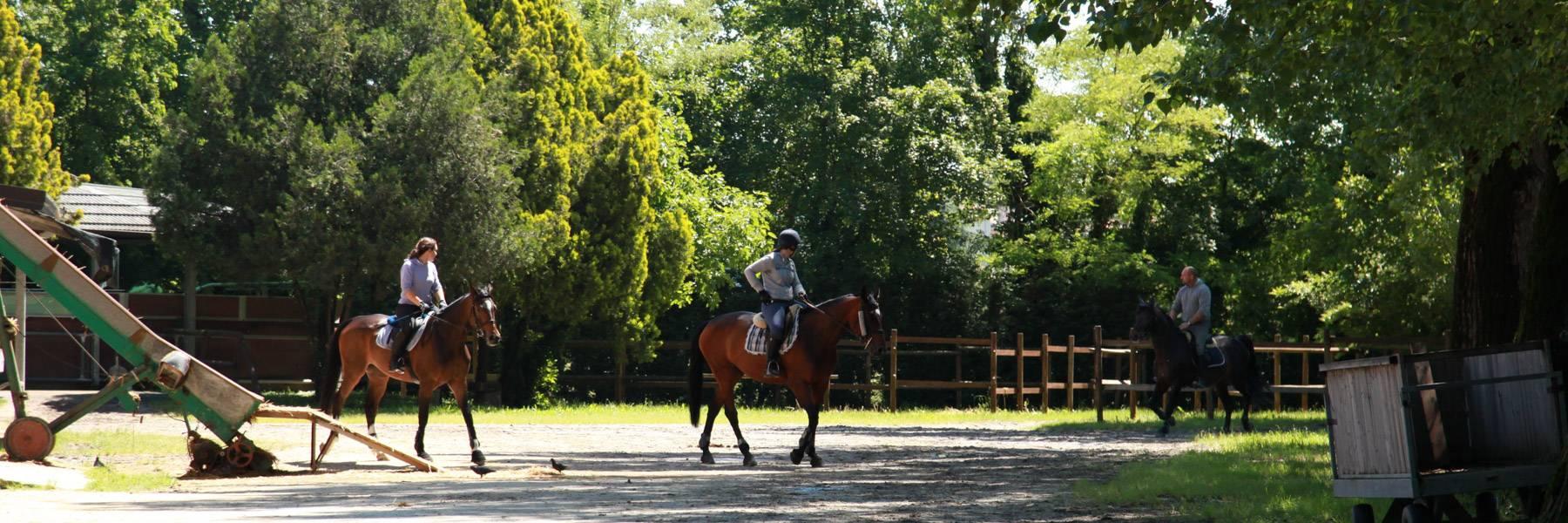 Scuola Padovana di Equitazione